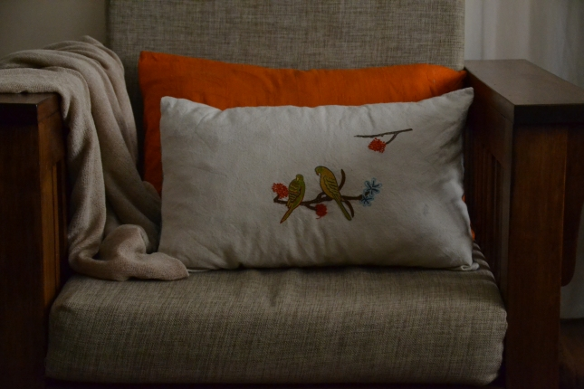 cushions, hacks 012