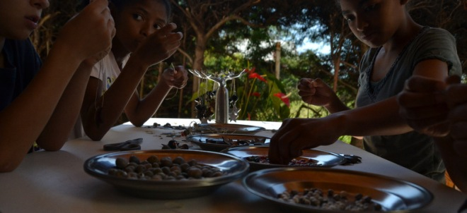 making ornaments, beans, nut-crust 003